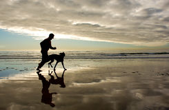 Guld- körning för morgonstrandkustlinje Fotografering för Bildbyråer