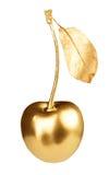 Guld- körsbär arkivbild