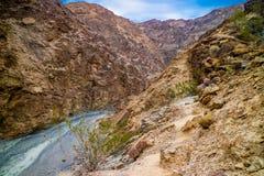 Guld- kanjonslinga i den Death Valley nationalparken Royaltyfria Bilder