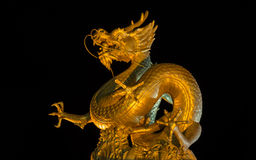 Guld- kinesisk drake Arkivbild