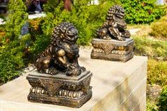 Guld- kinesisk lejonstaty Royaltyfri Foto