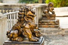Guld- kinesisk lejonstaty Arkivfoton