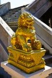 Guld- kinesisk lionstaty Royaltyfri Bild