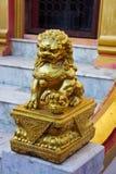 Guld- kinesisk lionstaty Arkivfoton