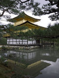 guld- kinkakujipaviljongtempel Arkivbilder