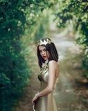 guld- klänningflicka royaltyfria foton