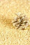 Guld- kotte royaltyfri foto