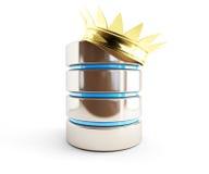 Guld- krona för databas Arkivfoton