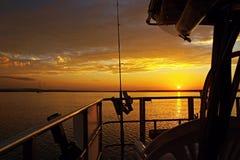 Guld- kryssa omkring solnedgångSeascape Arkivbilder