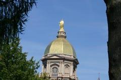 guld- kupol Arkivbild