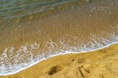 guld- kust Arkivfoto
