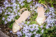 Guld- kvinnasandaler med blommor som annonserar skor Arkivfoto