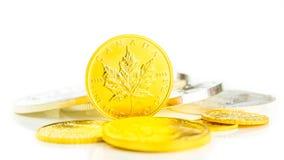 Guld- lönnlövanseende på kanten Arkivfoto