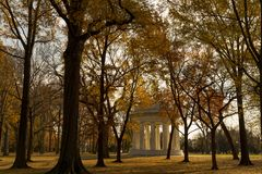 Guld- landskap av skogen av minnesmärken royaltyfri foto