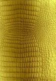 guld- läderreptiltextur Royaltyfri Bild