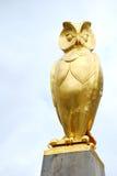 guld- leeds owl Royaltyfri Bild