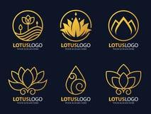 Guld- linje design för konst för lotusblommalogovektor fastställd Arkivbild