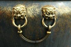 guld- lion Royaltyfria Foton