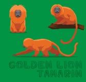 Guld- Lion Tamarin Cartoon Vector Illustration stock illustrationer