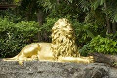Guld- lionstaty Royaltyfri Fotografi