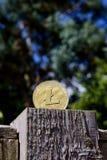 Guld- Litecoin mynt Royaltyfri Bild