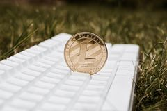 Guld- Litecoin mynt Royaltyfria Bilder