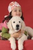 guld- liten retriever för flicka royaltyfri fotografi