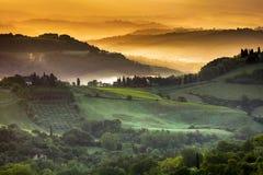 Guld- ljus av Tuscany Royaltyfri Foto