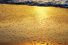 Guld- ljus för abstrakt bakgrund på bubblad bränning royaltyfri foto