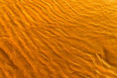 Guld- ljus som reflekterar av en vattenvåg på havet och sand på solnedgång royaltyfria bilder