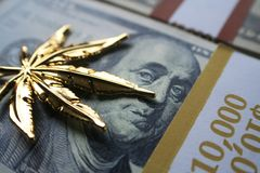 Guld- marijuanablad på högkvalitativa hundratals Royaltyfri Foto