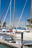 guld- marina för broport som ska visas arkivfoton