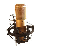 guld- mikrofon Royaltyfria Bilder