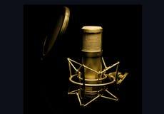 Guld- mikrofon Arkivfoton