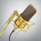 Guld- mikrofon Royaltyfri Foto