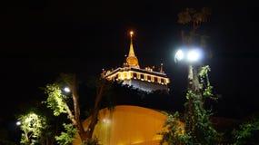 Guld- montering Bangkok på natten med strålkastare på träd Thailand Royaltyfria Foton