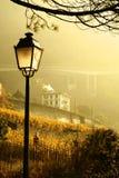 guld- morgon Arkivfoto