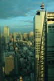 Guld- morgonsol i Tokyo Arkivfoton