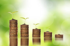 Guld- mynt i jord med unga växter som visar till krisen för finansiell investering arkivbilder