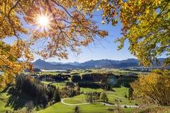 Guld- oktober med härliga kulöra bokträdträd i Bayern royaltyfri foto