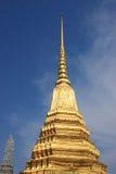 Guld- pagod Fotografering för Bildbyråer