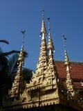 Guld- pagod Royaltyfri Fotografi