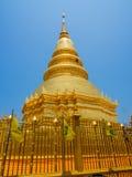 Guld- pagod Royaltyfri Foto