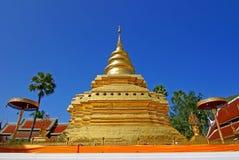 Guld- pagod 4 Royaltyfri Fotografi
