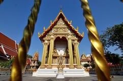 Guld- pagod Arkivbild