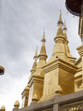 Guld- pagod Arkivfoto
