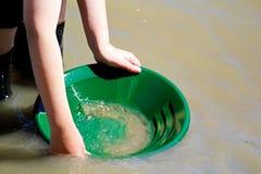 Guld- panorera för unga händer med en grön panna fotografering för bildbyråer