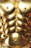 guld- pansar Royaltyfri Bild