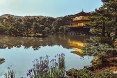 Guld- paviljong Kinkakuji på sjön under våren i Kyoto Japan royaltyfria foton