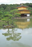Guld- paviljong - Kyoto - Japan Royaltyfri Bild